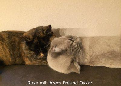 Rose und Oskar
