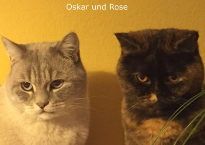 Rose und Oskar1